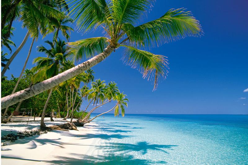 Tropical Island Beach Scene on Male Atoll Maldive Islands Indian Ocean