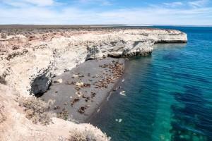 Esplorando l'argentina 16 Penisola Valdes