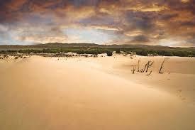 Deserto del Kalahari1