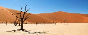 namib-desert1